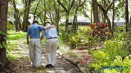 Demencia Por Enfermedad De Parkinson