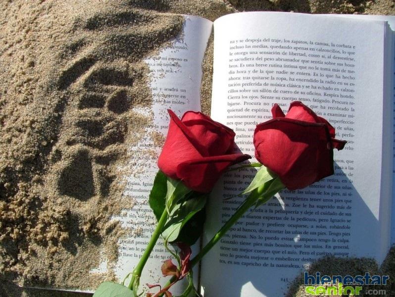 Cinco Recomendaciones Para Sant Jordi
